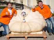 Halloween und mehr: Multitalent Kürbis: Kuriose Fakten zum Gemüse