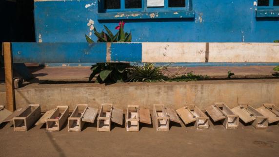 WHO: Pest in Madagaskar könnte sich auf andere Länder der Region ausbreiten