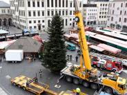 Augsburg: Der diesjährige Christbaum ist kleiner und unkompliziert