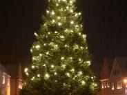 Abstimmung: Welcher Christbaum im Landkreis ist der schönste?