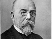 Mediziner: Robert Koch: Google Doodle für Meilensteine in der Medizin