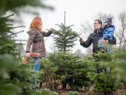 Weihnachtsfest: Tipps für den perfekten Christbaum