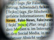 Internet: Grüne wollen Runden Tisch gegen Hass und Manipulation im Netz