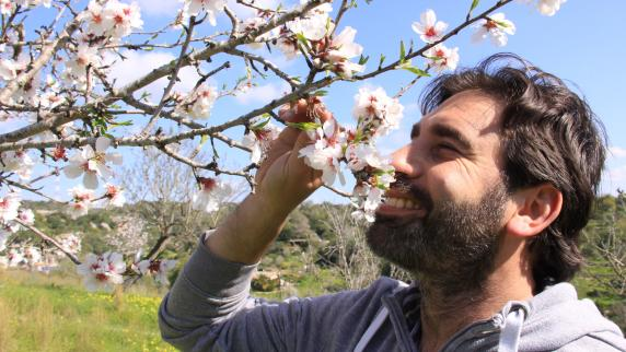 Urlaub in Europa: Blühende Balearen
