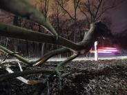 """Orkan: Sturm-Bilanz: Was """"Friederike"""" zurückließ"""