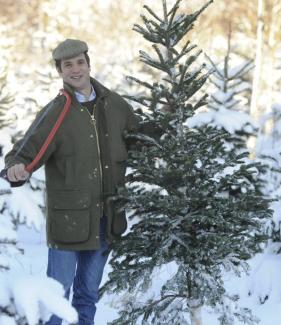 weihnachten familienereignis den christbaum einfach. Black Bedroom Furniture Sets. Home Design Ideas
