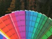 Thannhausen: Sie geben dem Rathaus mehr Farbe