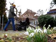 Wetterphänomen: Heuschnupfen im Februar: Ist der Winter noch normal?