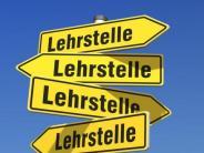 Landkreis: Wegweiser in die berufliche Zukunft