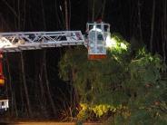 Landkreis Günzburg: Sturmnacht lässt Feuerwehren ausrücken