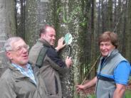 Landkreis/Kammeltal: Biotopbäume gehören in jeden Wald