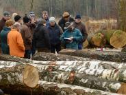 Landkreis Günzburg: Was einen Baum wertvoll macht