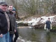 Krumbach: Krumbacher Hilfe bei der Fischaufzucht