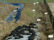 Burgau: Mülldeponie: Landkreis hat sich an Vorgaben gehalten