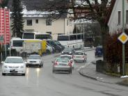 Kreis Günzburg: B16-Umgehung: Die Biologen machen den Anfang