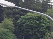 Waltenhausen: Sparen mit modernen Straßenlampen