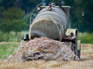 Balzhausen: Landwirt lässt versehentlich Gülle auf die Straße laufen