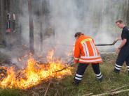 Kreis Günzburg: Waldbrandgefahr: Luftbeobachtung angeordnet