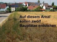 Balzhausen: Vier Grundbesitzer dringen auf Baugebietserschließung