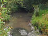 Aichen: Bürger sorgen sich um Zusamhochwasser