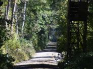 Burtenbach: Vermisster Mann wird von Jäger im Wald gefunden