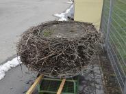 Thannhausen: Ein Storchennest speckt ab