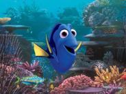 Findet Dorie: Vergessliche Doktorfische? Das echte Leben von Film-Fisch Dorie