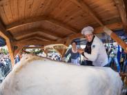 Traditionelles Fest: Dresdner Riesenstollen diesmal etwas kleiner