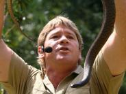 «Crocodile Hunter»: Steve Irwin bekommt posthum Hollywood-Stern