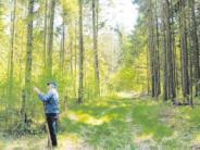 Waldbegehung: Ein Umbau vom Nadelwald zum Mischwald