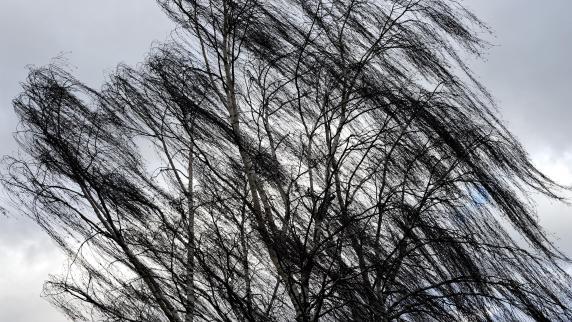 """Orkantief """"Ruzica"""": Sturm fegt durch die Region - Windböe erfasst Auto bei Mindelheim"""