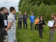 Natur: Der Wald wird zum Forschungsgebiet