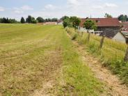 Bergfeld: Damit der Hang nicht rutscht