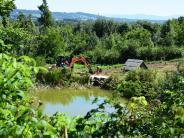 Dießen: Damm muss saniert werden