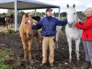 Landsberg: Weiterkämpfen, den geplagten Tieren zuliebe