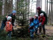 Apfeldorf: Papa Georg sägt den Baum selbst