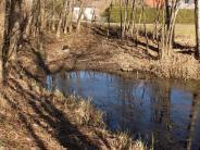 Seestall: Debatte um einen Bach ohne Wasser