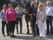 : Damit Pferde den Menschen helfen können