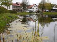 Gewässer: Eine Wasserfontäne soll die Algen vertreiben