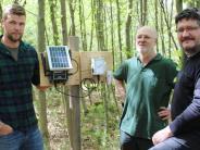 Fuchstal: Auch Regenwürmer werden im Eichwald gezählt