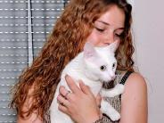 Kreis Landsberg: Ein Unbekannter misshandelt Katze Lilo