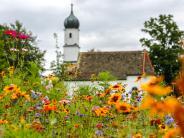 Eching: Die Gemeindewiesensollen erblühen