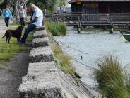 Schondorf: Die Ufermauer ist marode