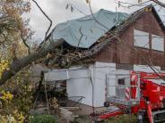 Schondorf: Der Sturm reißt eine alte Eiche um