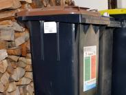 Landkreis Landsberg: Braune Tonne: Sparfüchse müssen trotzdem zahlen