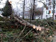 Landkreis Landsberg: Sturmtief: Die Schäden halten sich in Grenzen