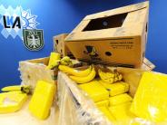 Illertissen: Ungewöhnlicher Fund in der Bananenkiste
