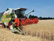 Getreidebauern: Bayern: Das Wetter verhagelt die Ernten
