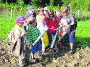 Aichach-Wilpersberg: Zeitungsente auf der Suche nach Riesenfüßen