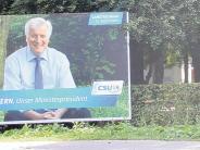 Wahlkampf in Mindelheim: Der Wettstreit um den besten Baum